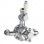 Victorian Twin Thermostatic Exposed Shower Valve